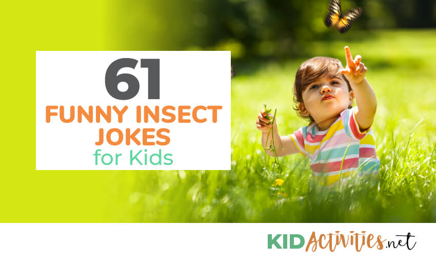 61 Funny Insect Jokes for Kids - Kid Activities