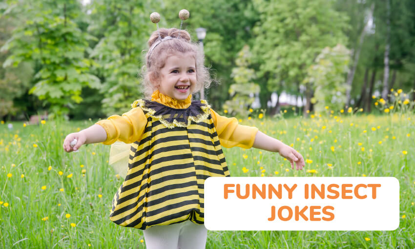 A collection of funny insect jokes.