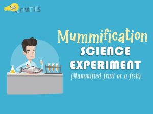 Mummification Science Experiment