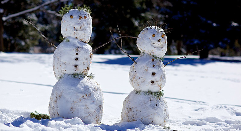 Snowman - Miscellaneous, Songs, Poems, Jokes and More