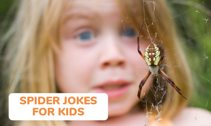 A collection of spider jokes for kids.