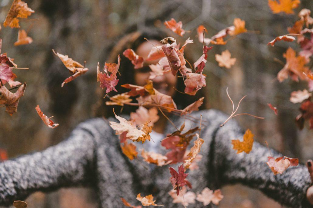 49 Fun Leaf Activities for Kids - Kid Activities