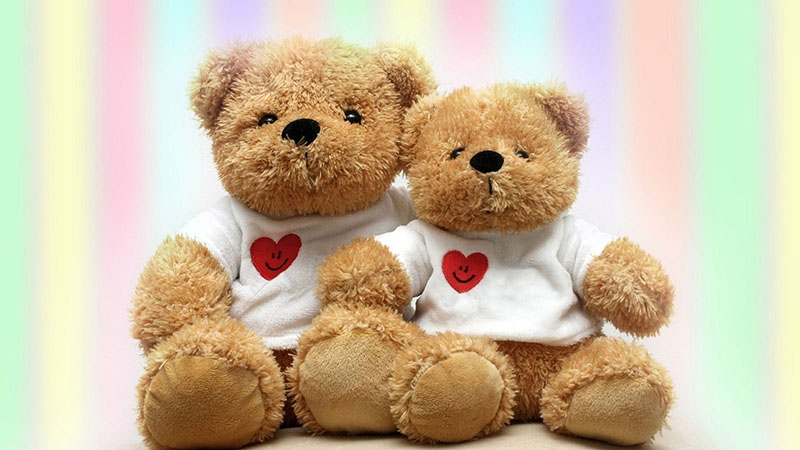 Teddy Bears And Other Too