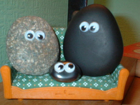 How to make pet rocks for kids.