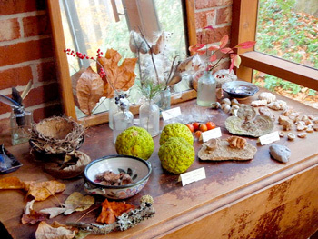 Leaf themed display table for kids. This is a great leaf activity for kids and helps bring in the fall season.