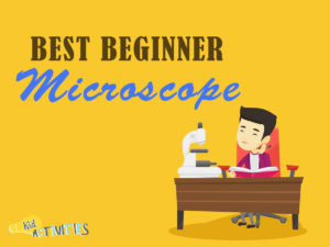best beginner microscopes