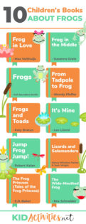 A collection of children's books about frogs. These books are great for reading as part of a classroom frog theme or just for fun.