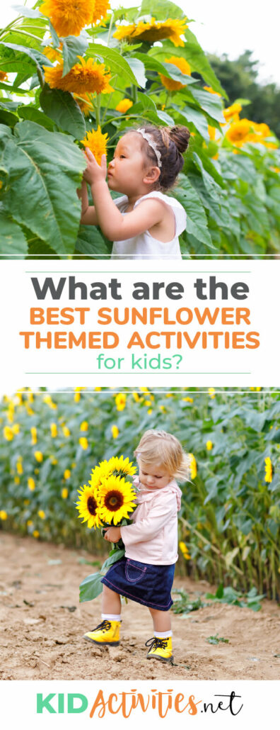 What are the best sunflower activities for kids? Here you will find a list of 23 activities to kids interact and learn about sunflowers. Great for a sunflower theme day.