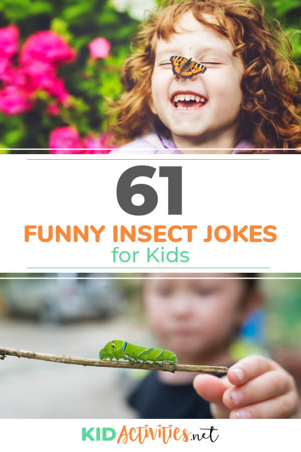 A collection of funny insect jokes for kids. These are great, school appropriate jokes anyone can use.
