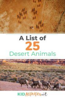 A list of 25 desert animals